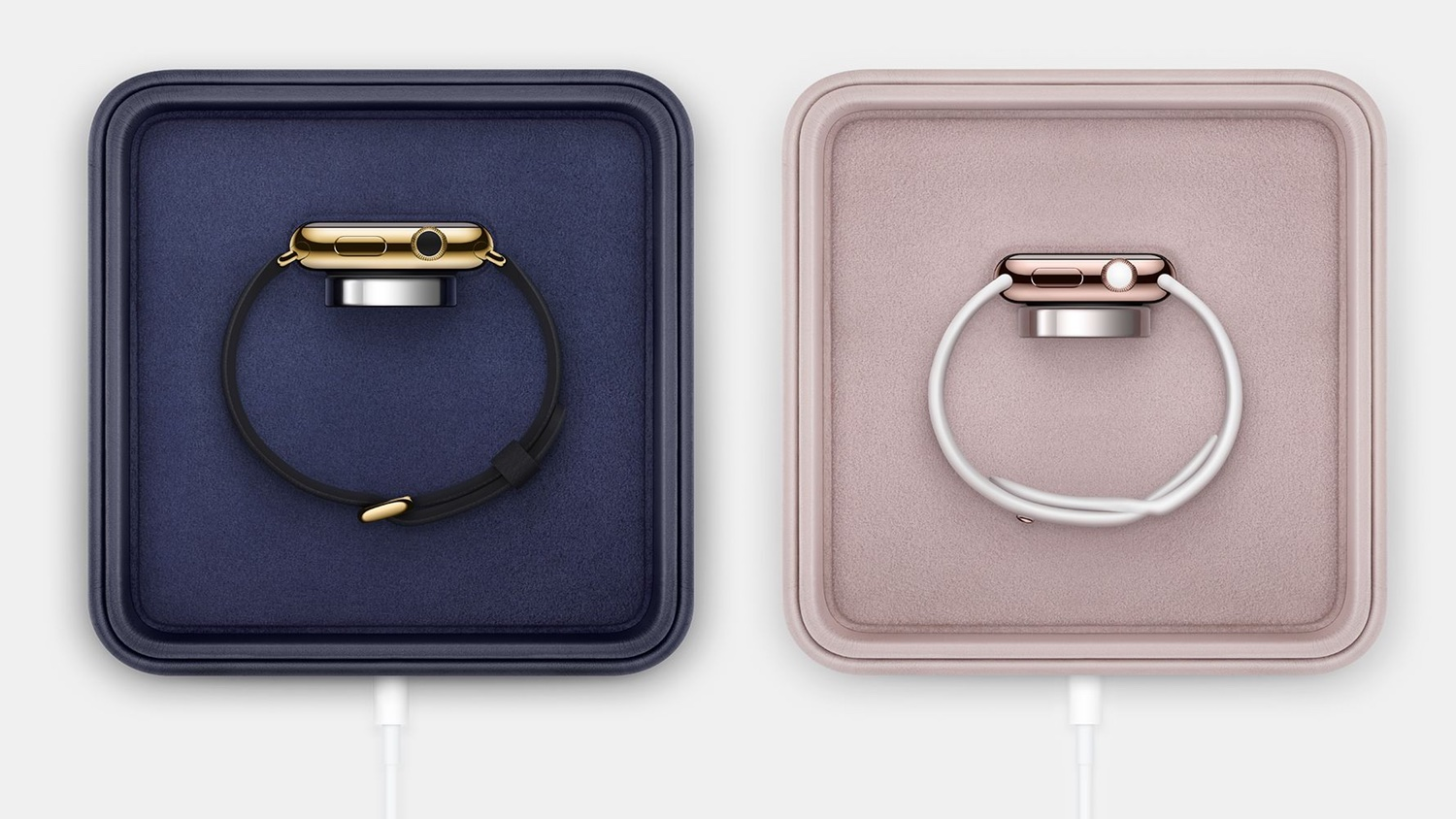 Information about the Apple Watch Edition disappears from the website and from stores