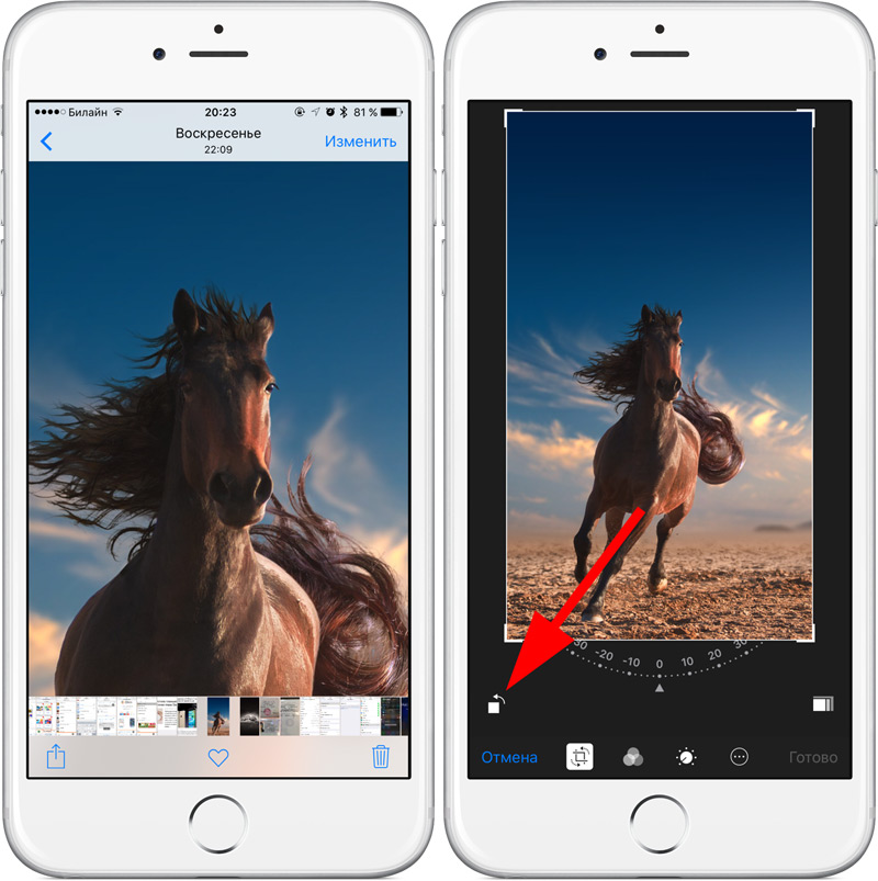 Bug in iOS 9 allows you to view photos with infinite zoom