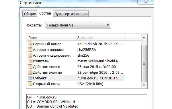 Roskomnadzor has blocked himself