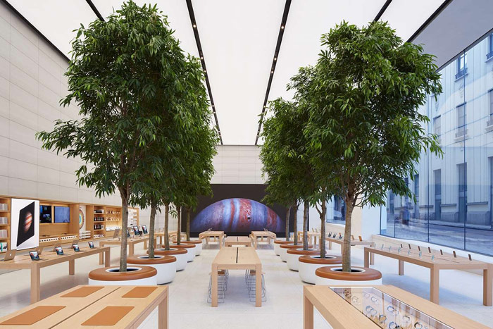 Apple has patented the idea of trees used for interior decoration Apple Store