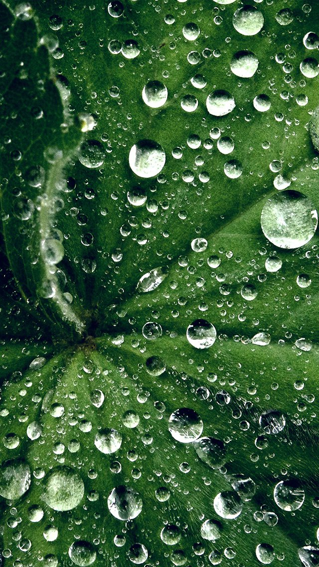 A selection of the best Wallpapers: water