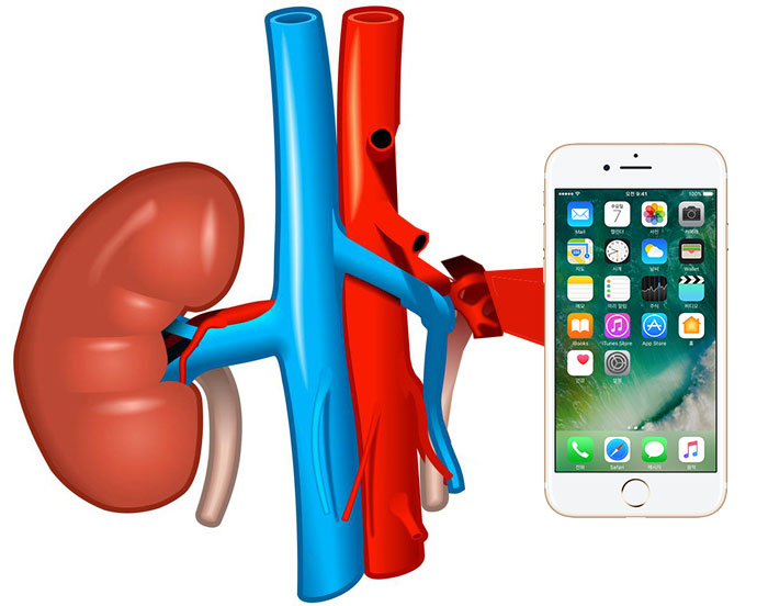 The inhabitant of Moldova has placed the ad on the exchange of kidneys on the iPhone 7