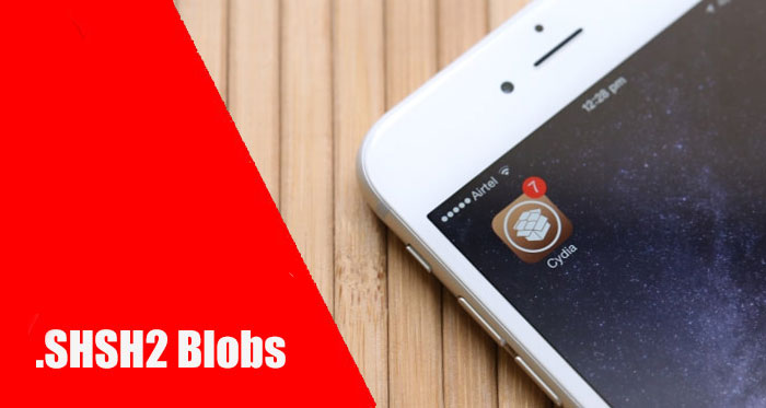 Jailbreak iOS 10.2: why do you want to save SHSH2 blobs right now