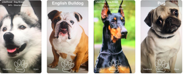 Three iOS apps for those who have Pets