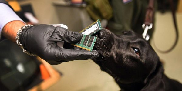 "The FBI and US police are using dogs as a living analogue of ""Find my iPhone"""