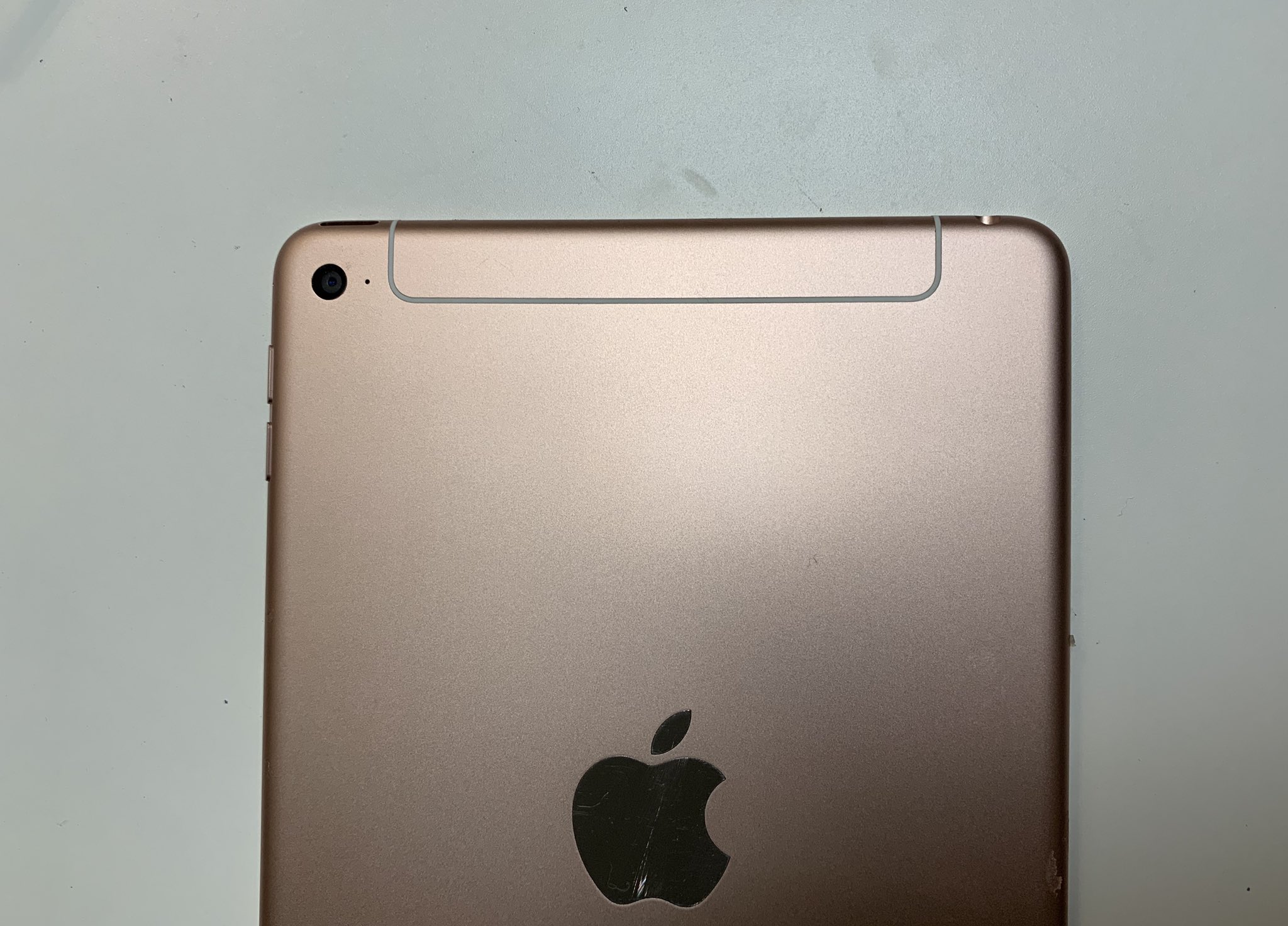 Published the first photos of the updated iPad mini
